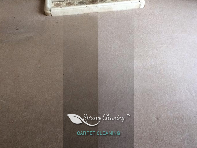 Carpet Cleaning cleaners