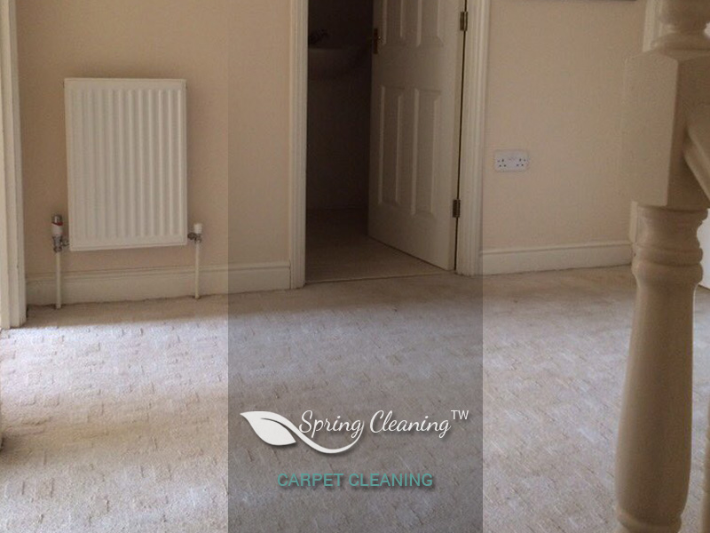image of Carpet Cleaning